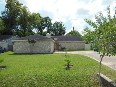 Houston Single Family Home For Sale: 5819 Elm Street