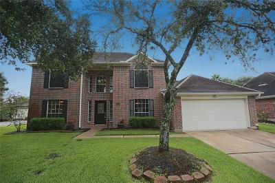 Pearland Single Family Home For Sale: 2509 Briarglen Drive