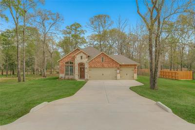 Conroe Single Family Home For Sale: 9159 Silver Back Trail