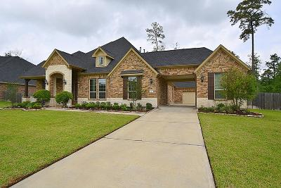 Tomball Single Family Home For Sale: 22435 Banewood Drive