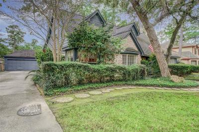 Houston Single Family Home For Sale: 723 Baltic Lane