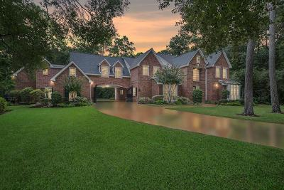 The Woodlands Single Family Home For Sale: 27 Misty Grove Circle