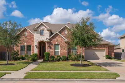 Friendswood Single Family Home For Sale: 1004 Knoll Bridge Lane