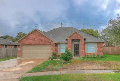 Pearland Single Family Home For Sale: 6805 Haley Court
