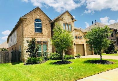 Sugar Land Single Family Home For Sale: 3814 Lone Rock Lane