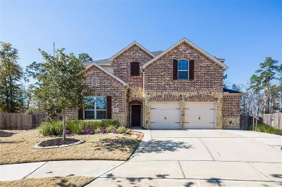 Conroe Single Family Home For Sale: 8493 Horsepen Bend Drive