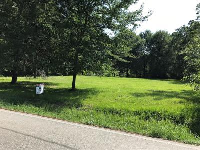 Houston Single Family Home For Sale: 12323 Scyrus Lane
