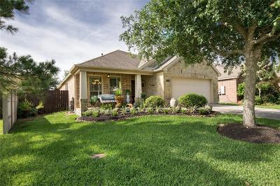 League City Single Family Home For Sale: 3115 Rock Brook Falls Lane
