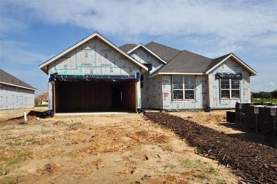 League City TX Single Family Home For Sale: $292,075