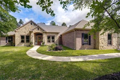 Conroe Single Family Home For Sale: 11302 Longmire Creek Court