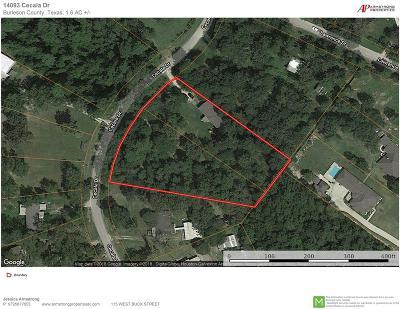 Montgomery Farm & Ranch For Sale: 14093 Cecala