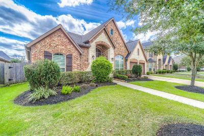 Fort Bend County Single Family Home For Sale: 4214 Birch Vale Lane
