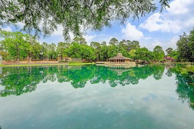 Houston Single Family Home For Sale: 190 Old Bridge Lake