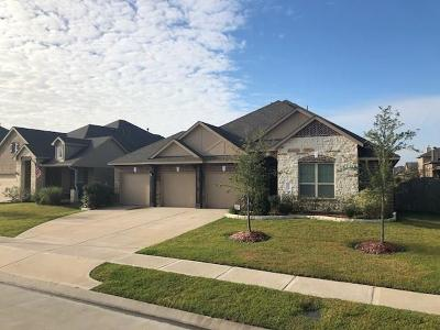 Tomball Single Family Home For Sale: 22951 Dale River Road