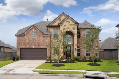 Manvel Single Family Home For Sale: 3206 Horse Canyon Court