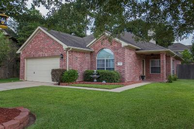 Conroe Single Family Home For Sale: 1 Lulach Circle