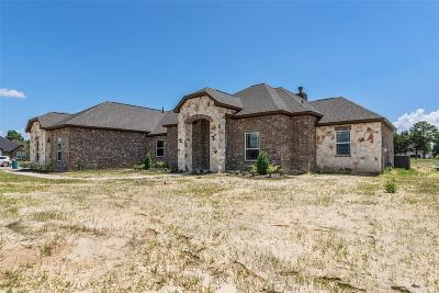 Baytown Single Family Home For Sale: 6766 Mulberry Bayou Drive