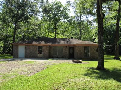 Dayton Single Family Home For Sale: 77 County Road 6497