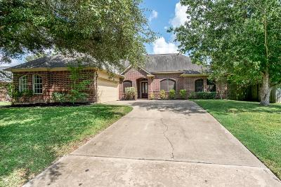 Katy Single Family Home For Sale: 6918 Autumn Thistle Drive