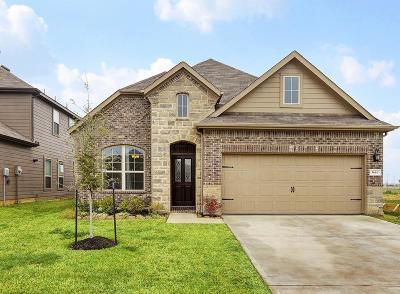Katy Single Family Home For Sale: 5614 Armillary Drive