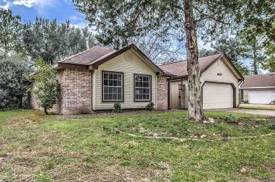 Houston Single Family Home For Sale: 8627 Pine Falls Drive