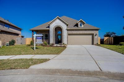 League City Single Family Home For Sale: 2989 Gibbons Hill Lane
