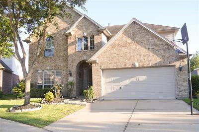 Houston Single Family Home For Sale: 16707 Newlight Bend Drive