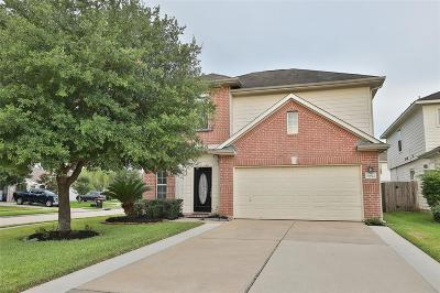 Tomball Single Family Home For Sale: 19022 Bressingham Drive