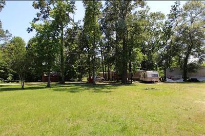 Conroe Farm & Ranch For Sale: 18900 Deer Glen Drive