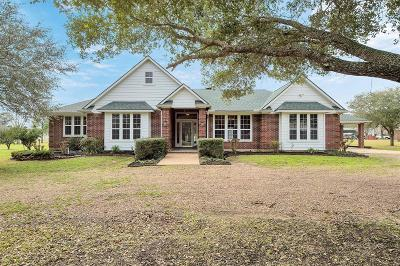 Austin County Single Family Home For Sale: 428 Briar Creek Lane