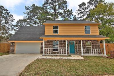 Houston Single Family Home For Sale: 17845 S Cypress Villas Dr Drive #1405