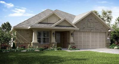 Lakes Of Savannah Single Family Home For Sale: 13819 Sandstone Bridge Lane
