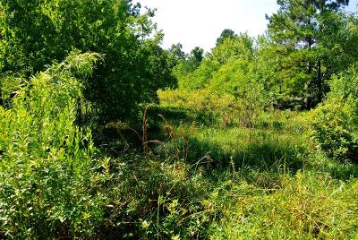 Conroe Residential Lots & Land For Sale: Tbd Old Texaco Road