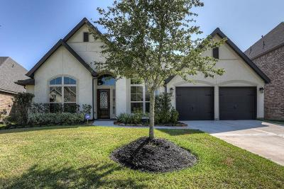 Pearland Single Family Home For Sale: 3417 Golden Cypress Lane