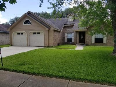 Sugar Land Single Family Home For Sale: 3411 S Timber View Drive S