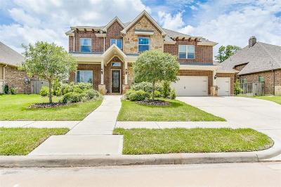 Fort Bend County Single Family Home For Sale: 9011 Marsh Creek Court