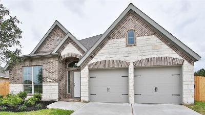 Pearland Single Family Home For Sale: 2813 Sable Creek Lane