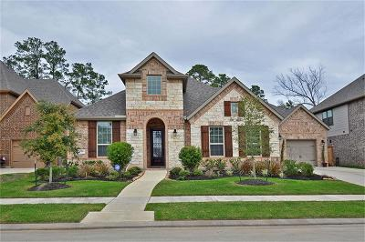 Houston Single Family Home For Sale: 13913 North Lake Branch Lane