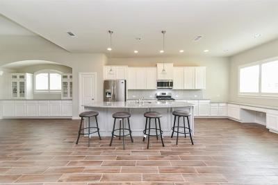 Manvel Single Family Home For Sale: 2614 Redbud Trail Lane