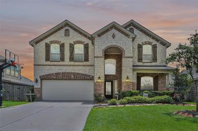 Tomball Single Family Home For Sale: 18207 Bridle Meadow Lane Lane