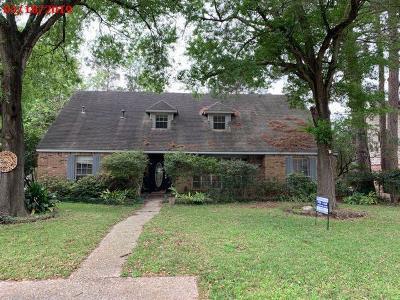 Houston Single Family Home For Sale: 5523 Lodge Creek Drive