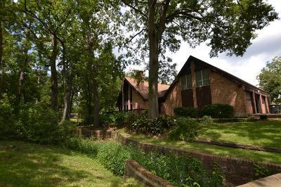 Houston Single Family Home For Sale: 12501 Tammarack Drive