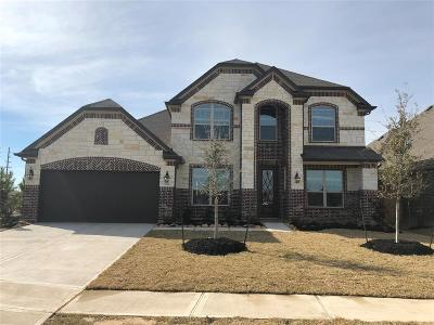 Manvel Single Family Home For Sale: 4324 Turnbridge Drive