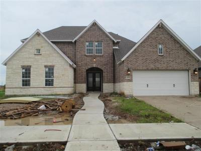 Missouri City Single Family Home For Sale: 2006 Big Creek