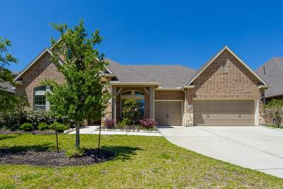 Friendswood Single Family Home For Sale: 2207 Stillhouse Hollow Lane