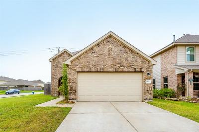 Houston Single Family Home For Sale: 10827 Brittan Leaf Lane