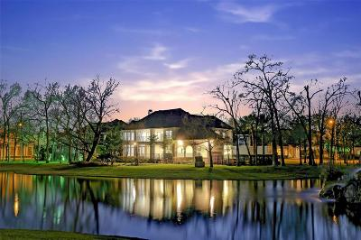 Houston Single Family Home For Sale: 907 Peachwood Bend Drive