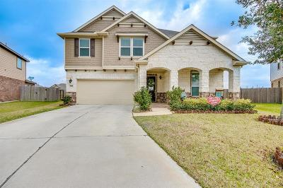 Pearland Single Family Home For Sale: 3119 Morgan Meadow Lane