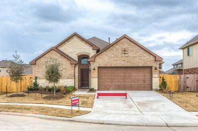 Cypress Single Family Home For Sale: 11834 Trinity Bluff