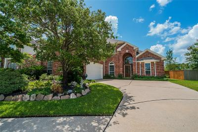 Tomball Single Family Home For Sale: 12039 Echo Canyon Drive
